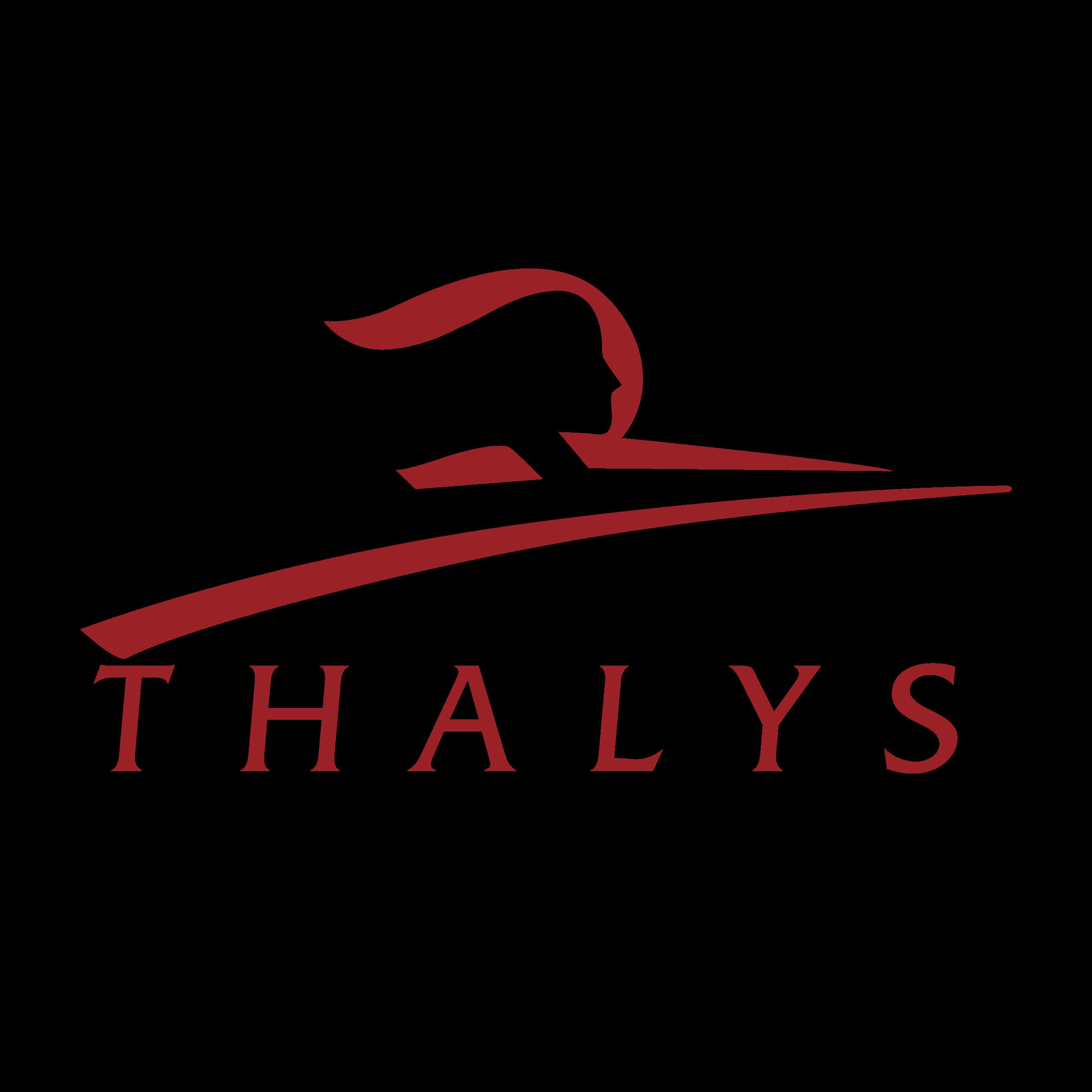 http://globalnamingnetwork.com/gnn-client-portfolio/thalys/